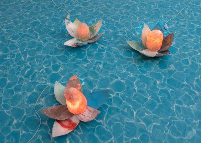Nachtleuchten-Blumenantwort-12